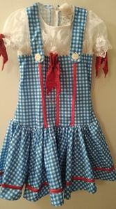 Other - Wizard of Oz Dorothy costume!!